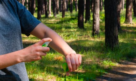 Camping Insect Repellent – How to Repel Mosquitoes & Other Pests