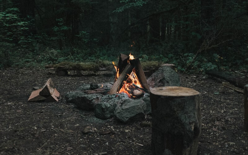 A campfire built in the woods to help repel wild animals.