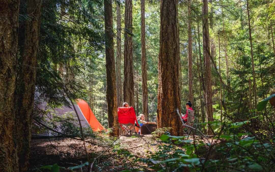 Beginners Guide to Camping Banner: People in chairs next to tent between trees in a forest.