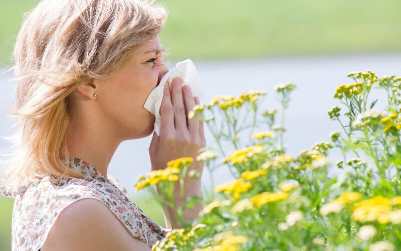 Woman standing behind yellow flowers sneezing into a tissue because of allergies.