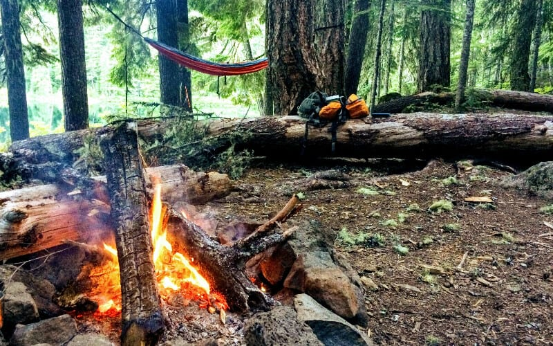 A hammock set up a safe distance away from a campfire in a forest.