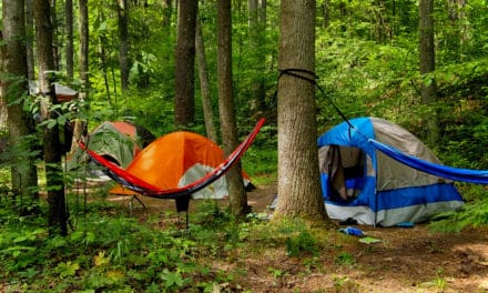 Hammock vs Tent Camping: Everything You Need to Know
