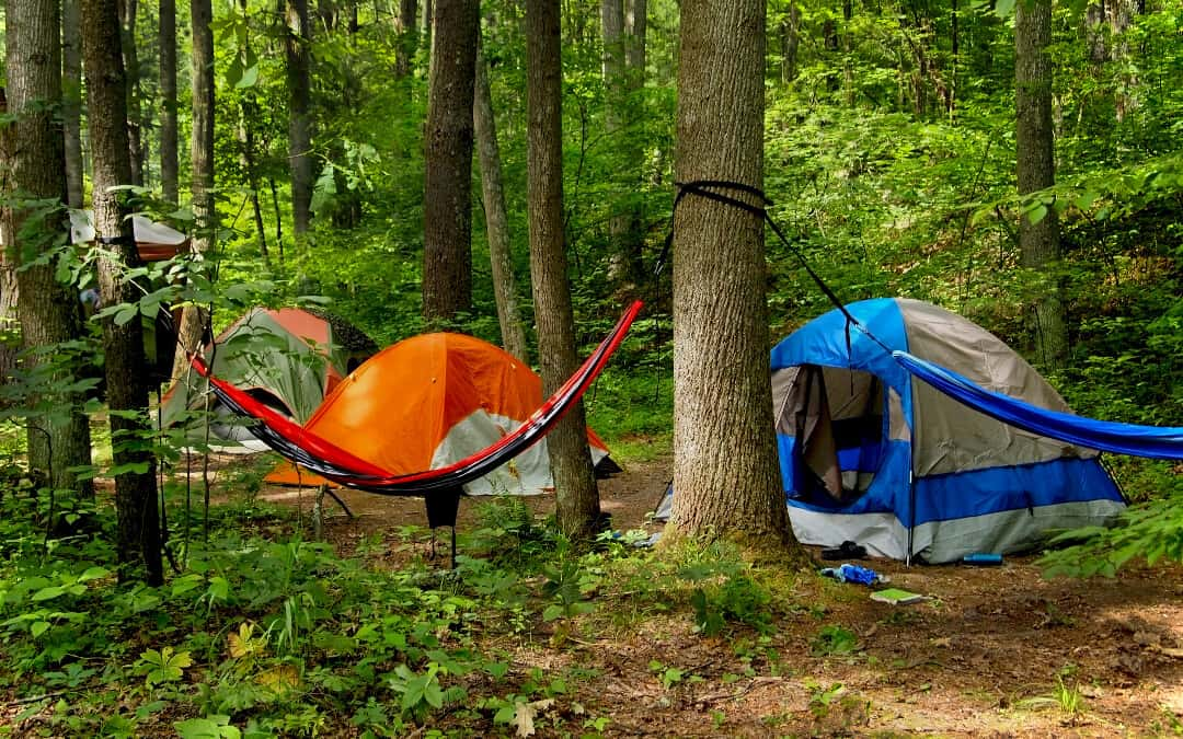 Hammock vs Tent Camping Banner: Two hammocks suspended from trees with three tents in the background in the forest.